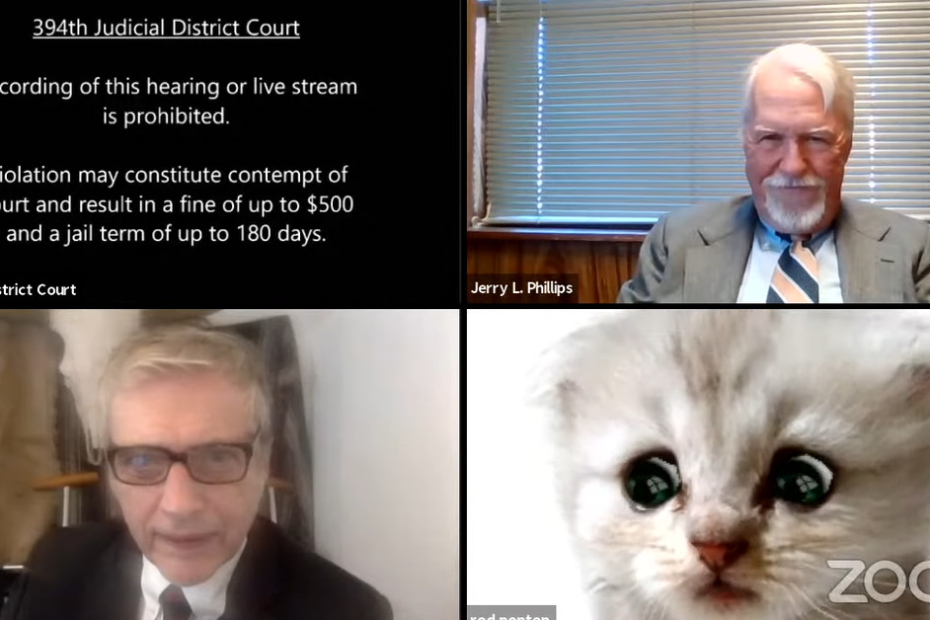 Zoom filter traps this lawyer as a cute cat during live court hearing